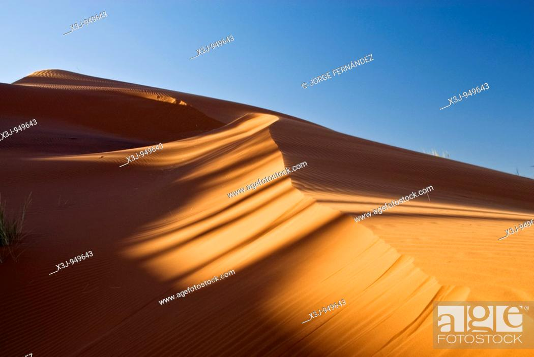 Imagen: Desert landscape from the top of a dune, Namib Naukluft National Park, Sossusvlei, Namibia, Africa.