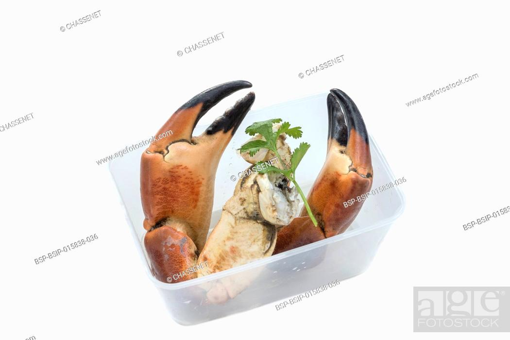 Stock Photo: Two Cooked pincers from crab. Isolated on white background.