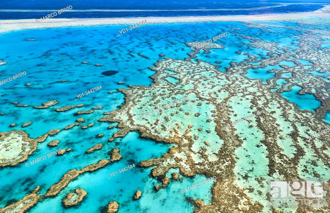 Stock Photo: Great Barrier Reef. Whitsundays. Queensland Australia.
