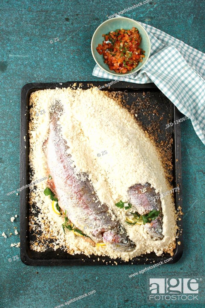 Stock Photo: Trout in coarse salt crust.