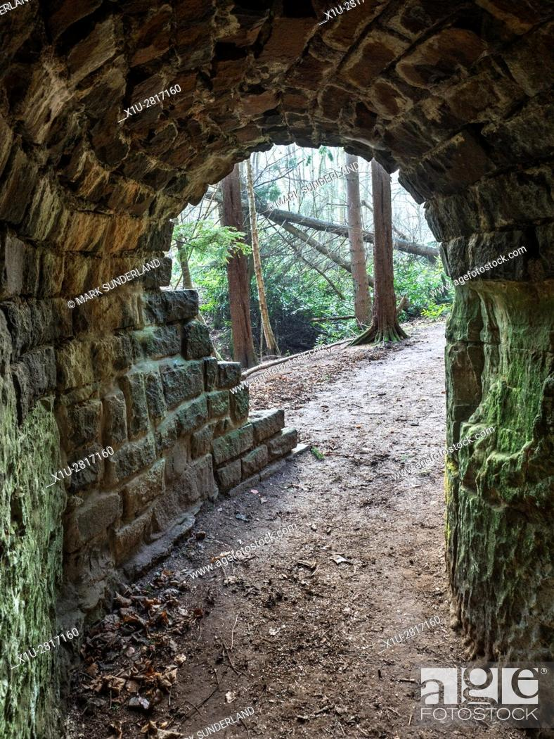 Imagen: Looking out of The Tunnel on the Path to Maspie Den Falkland Estate near Falkland Fife Scotland.