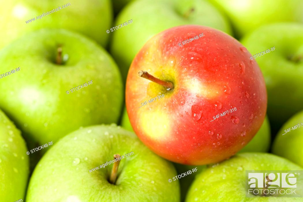 Stock Photo: Red apple on green apples.