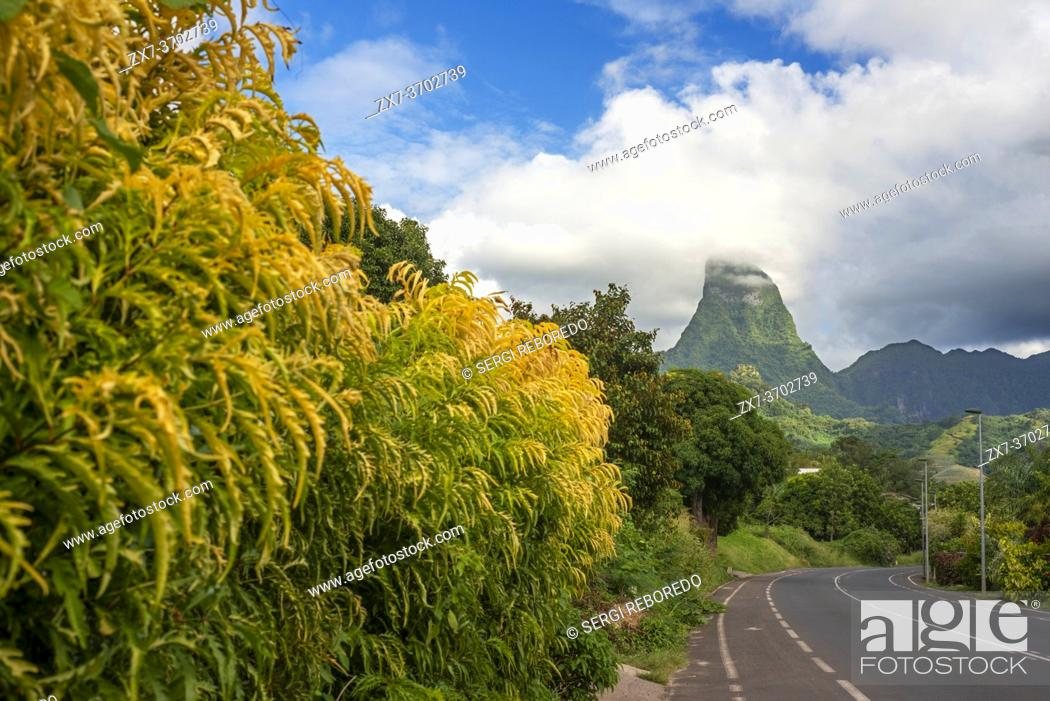 Stock Photo: Road way in Cook's bay and Paopao valley in Moorea, French Polynesia, Society Islands, South Pacific. Cook's Bay.