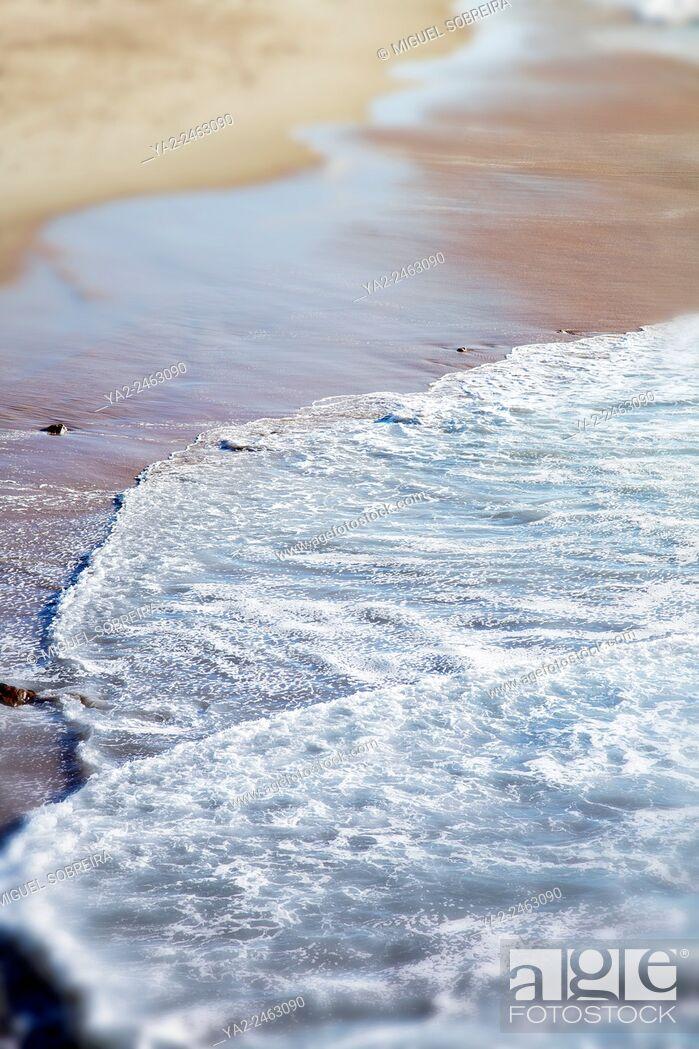 Imagen: Seashore.