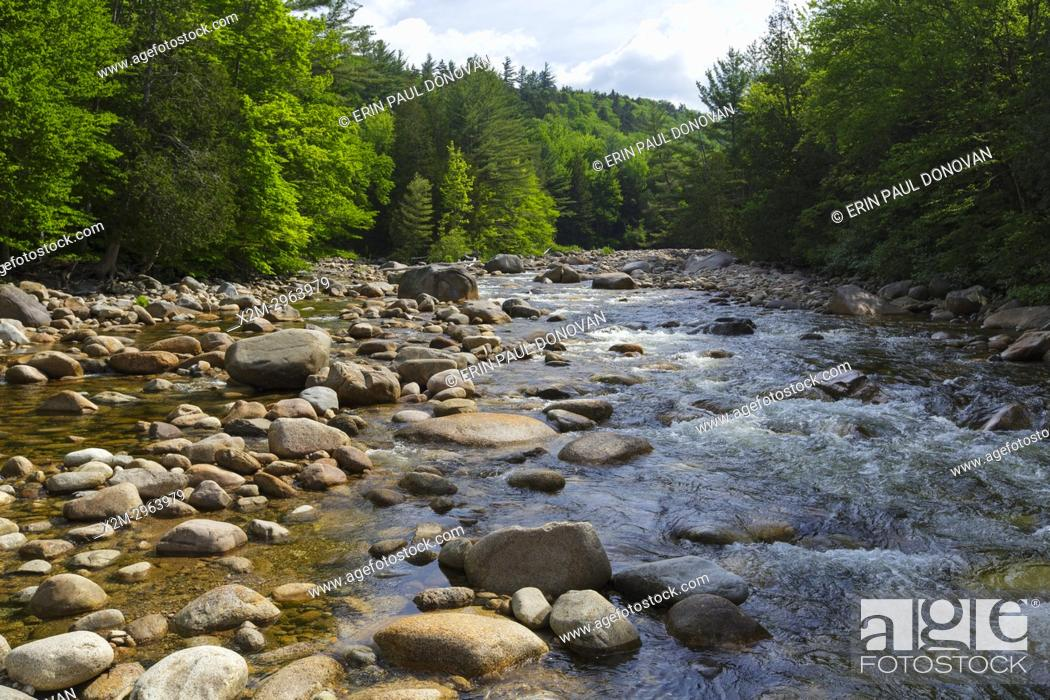 Stock Photo: The East Branch of the Pemigewasset River in the Pemigewasset Wilderness of Lincoln, New Hampshire USA during the spring months.