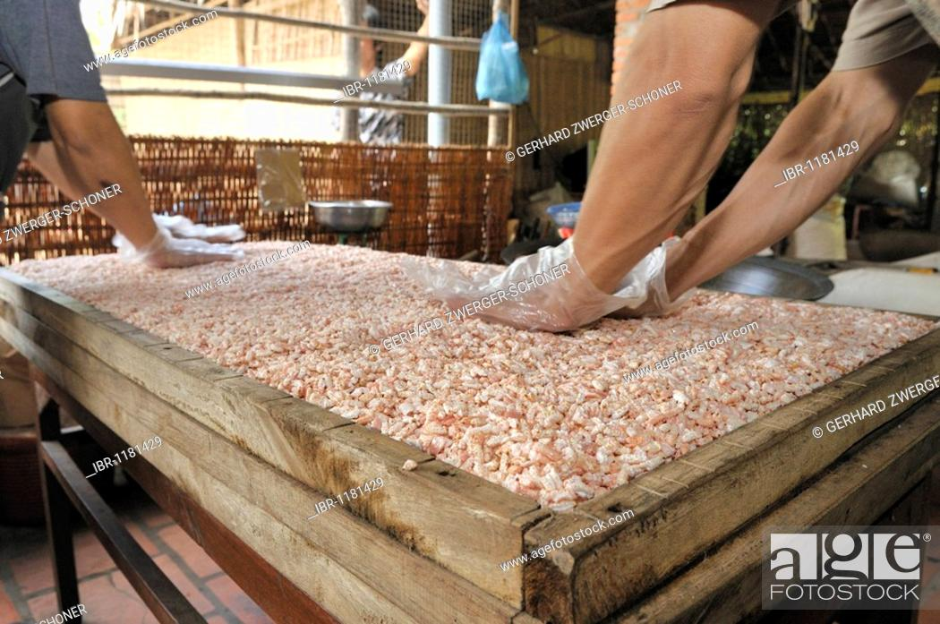 Stock Photo: Men preparing puffed rice sweets, confectionery factory, Vinh Long, Mekong Delta, Vietnam, Southeast Asia.