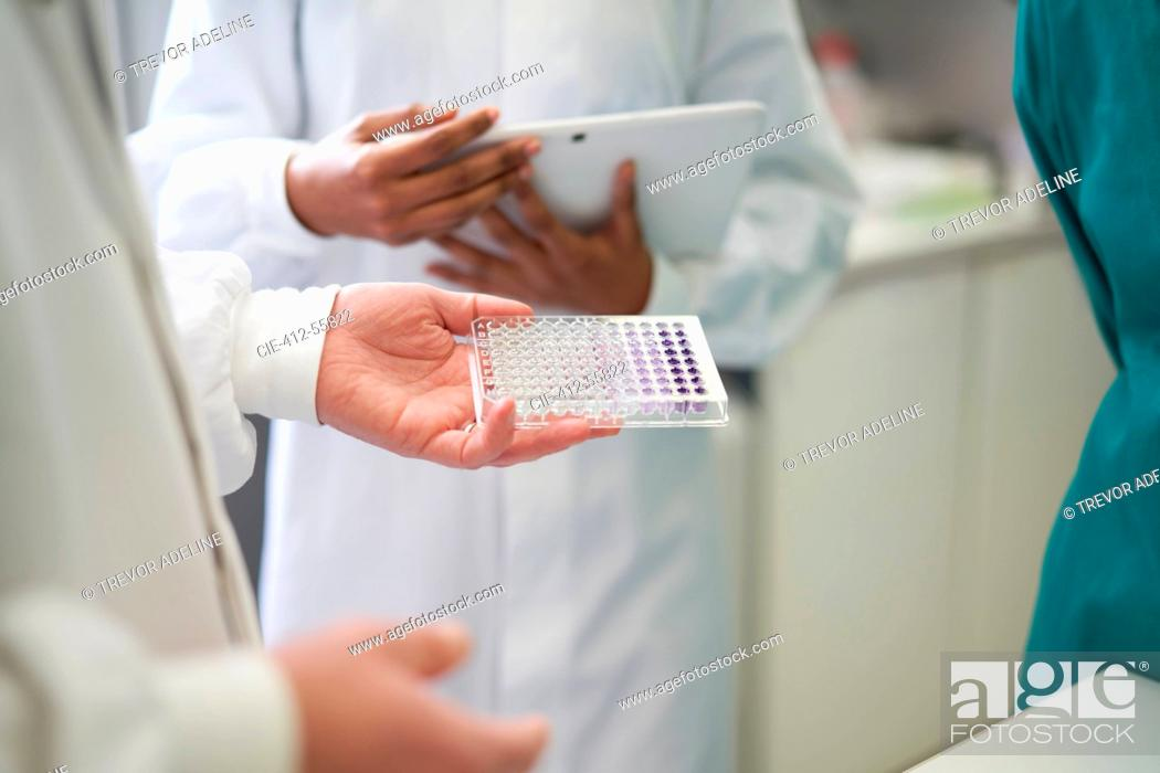 Imagen: Scientists with digital tablet and specimen tray in laboratory.