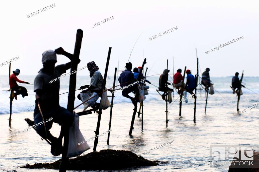 Stock Photo: Stilt fishermen perched on their poles in Midigama, Sri Lanka.
