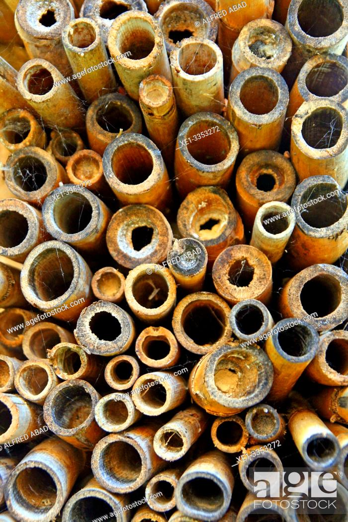 Stock Photo: stacked plant reeds for construction, bioconstruction school Origens, Girona, Catalonia, Spain.