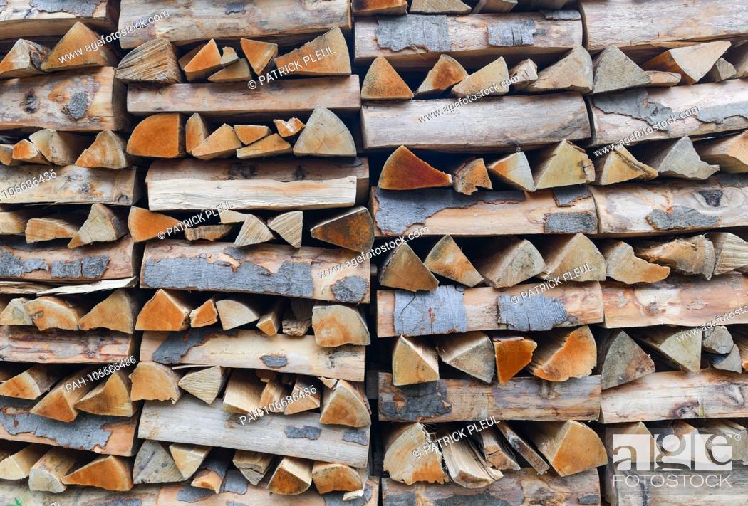 Imagen: 19.07.2018, Brandenburg, Altkunkendorf: Split and stacked beechwood lying on a yard. Photo: Patrick Pleul / dpa-Zentralbild / ZB | usage worldwide.