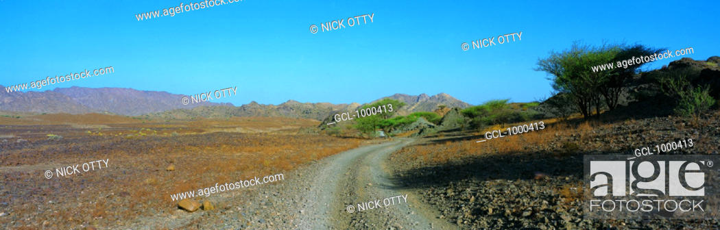 Stock Photo: Dirt road into the mountains, UAE.