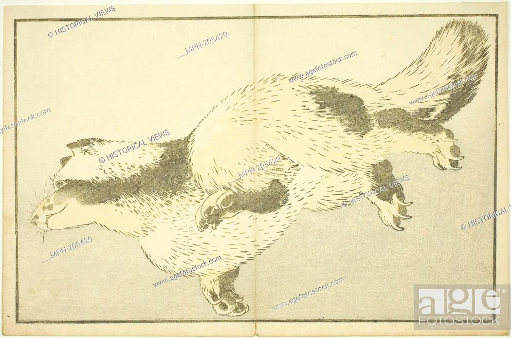 Stock Photo: Fox, from The Picture Book of Realistic Paintings of Hokusai (Hokusai shashin gafu) - c. 1814 - Katsushika Hokusai ?? ?? Japanese.