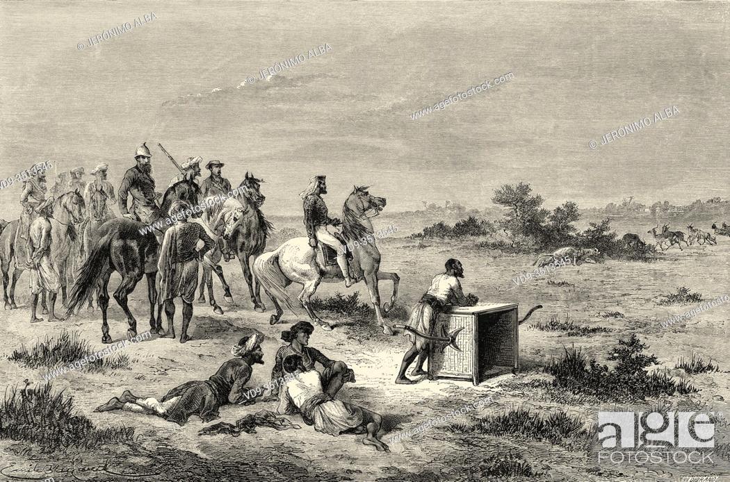 Stock Photo: Antelope hunting in Vadodara (Baroda). Gujarat, India. Old engraving illustration from El Mundo en la Mano 1878.