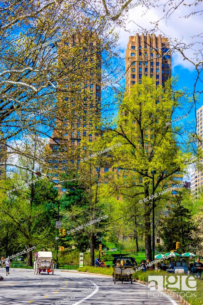 Stock Photo: Central Park in springtime, New York, New York USA.