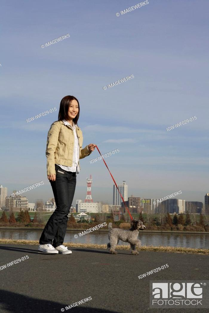 Stock Photo: View of a young woman walking with her pet dog.