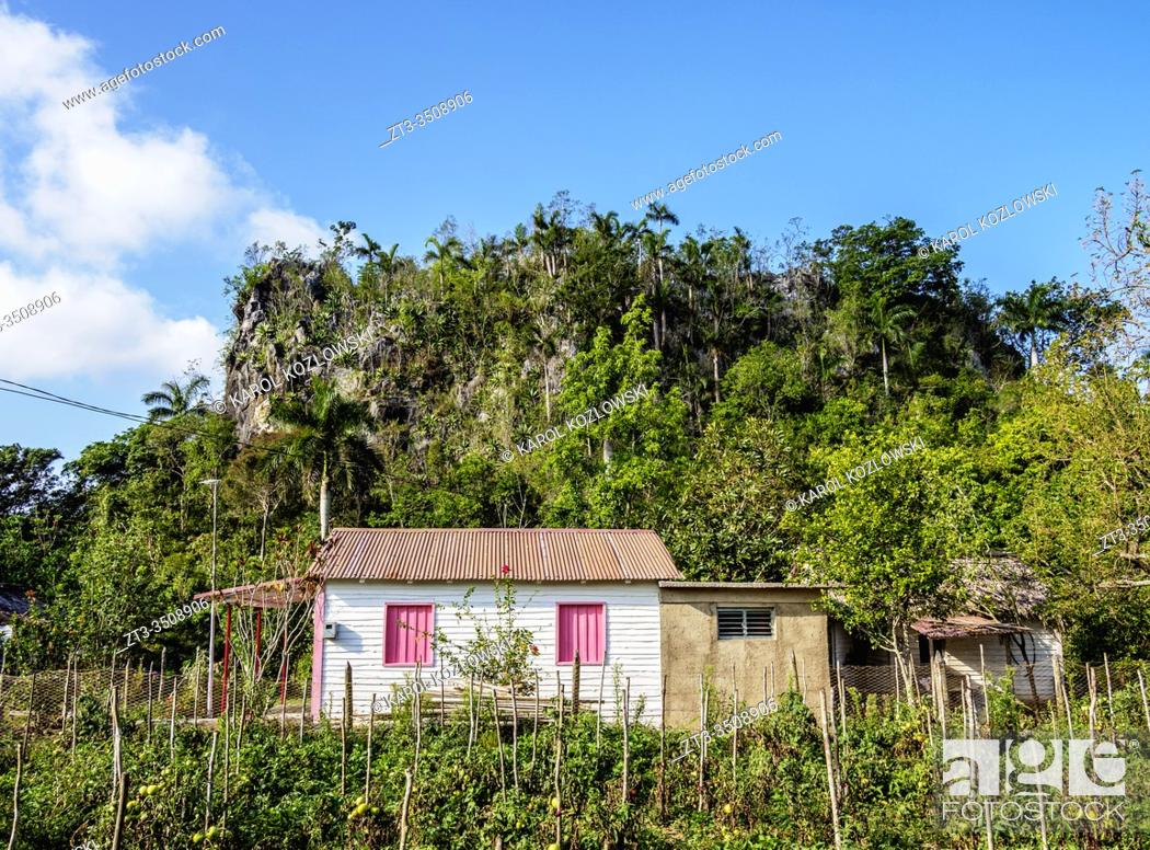 Stock Photo: Vinales Valley, UNESCO World Heritage Site, Pinar del Rio Province, Cuba.