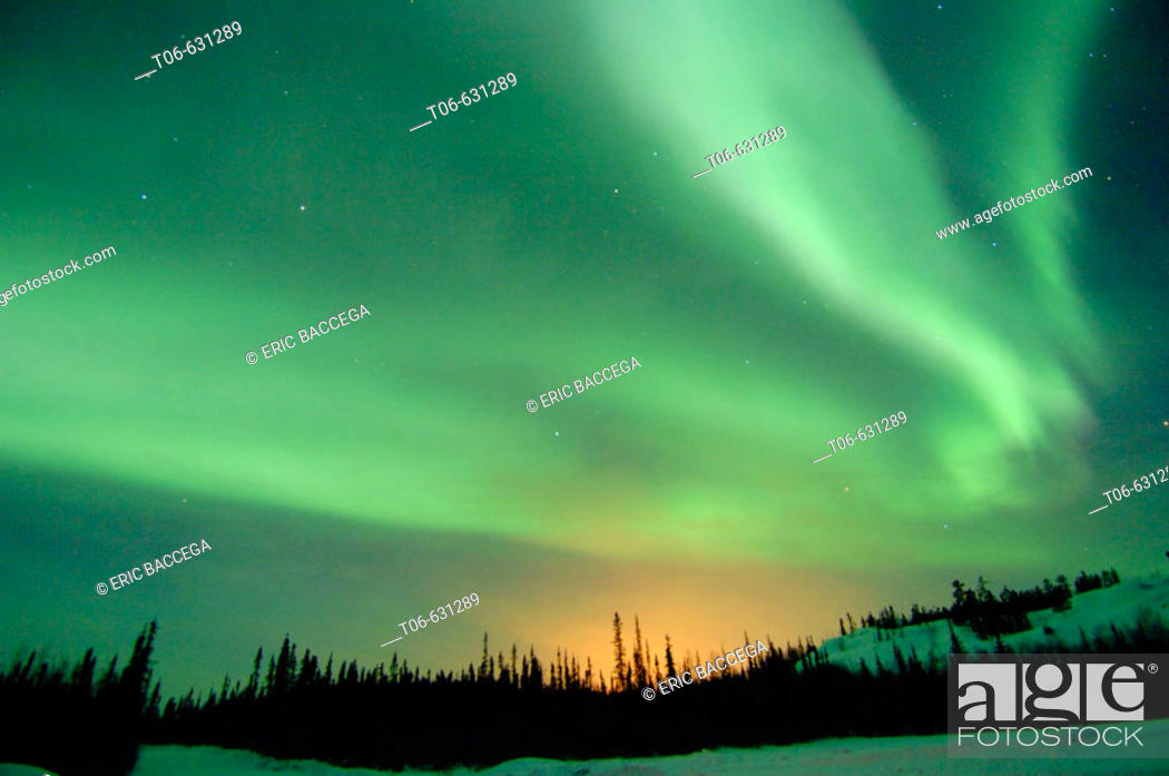 Stock Photo: Northern lights (Aurora borealis) in winter, Nord West territories, Canada.