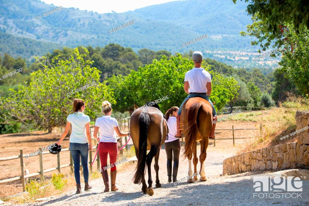 Stock Photo: Rear view of female groom leading horse rider along paddock at rural stables.