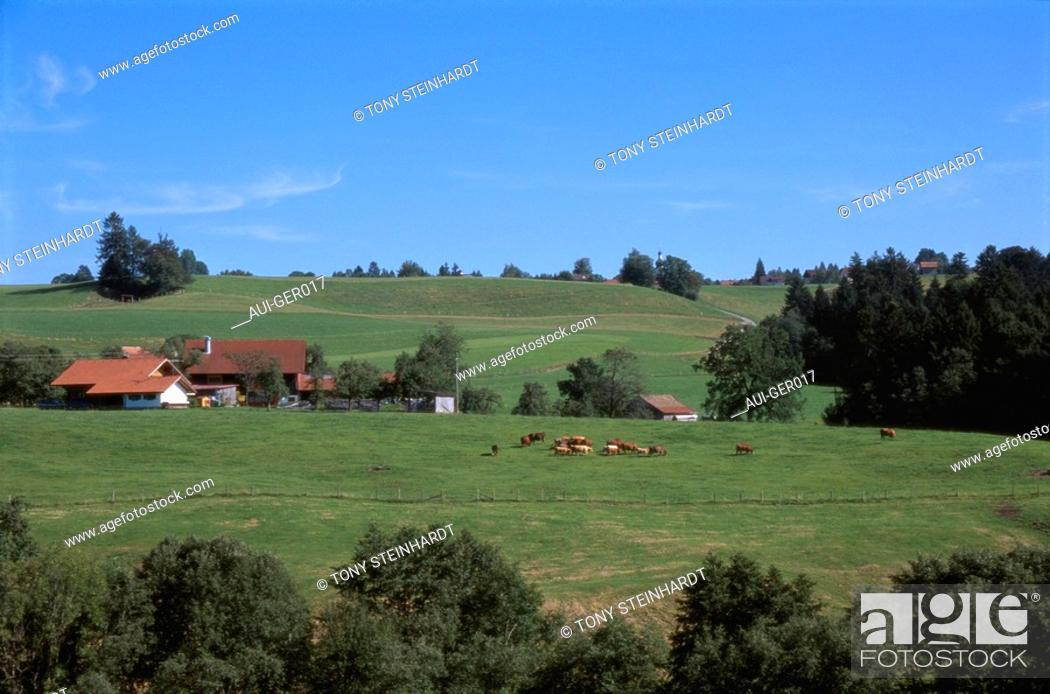 Stock Photo: Germany - Bavaria - Landscape.