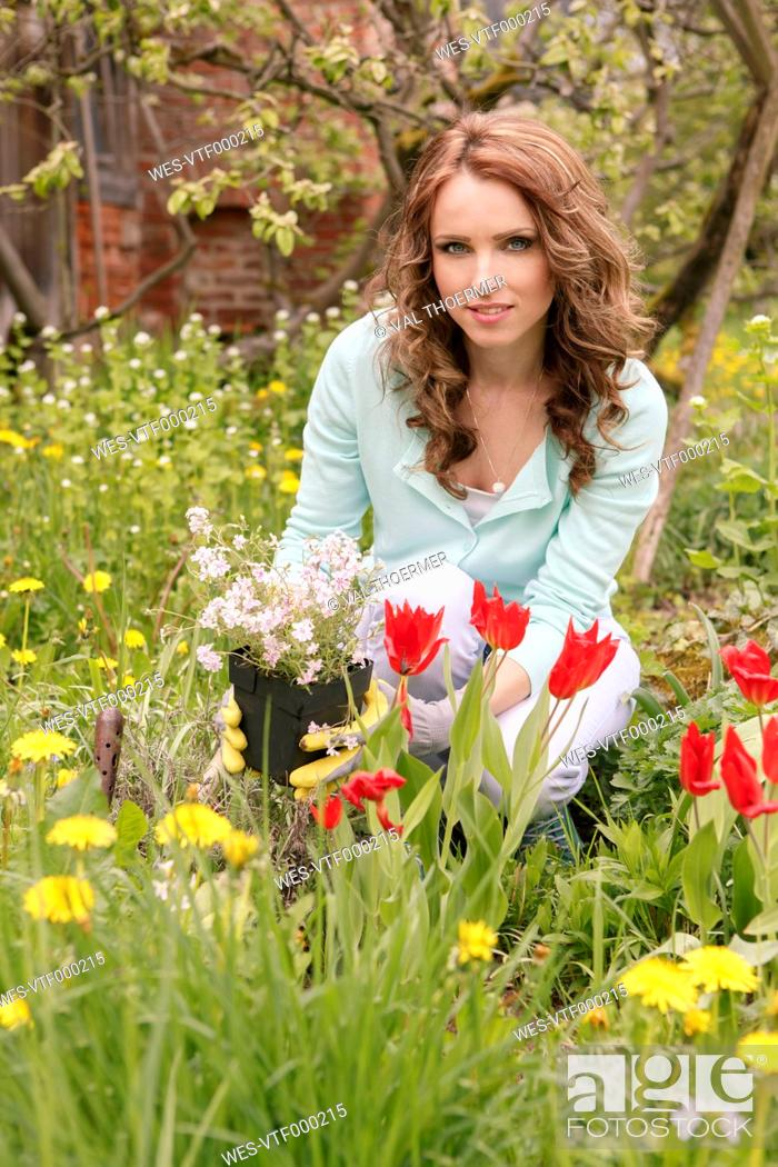 Stock Photo: Woman planting in the garden.