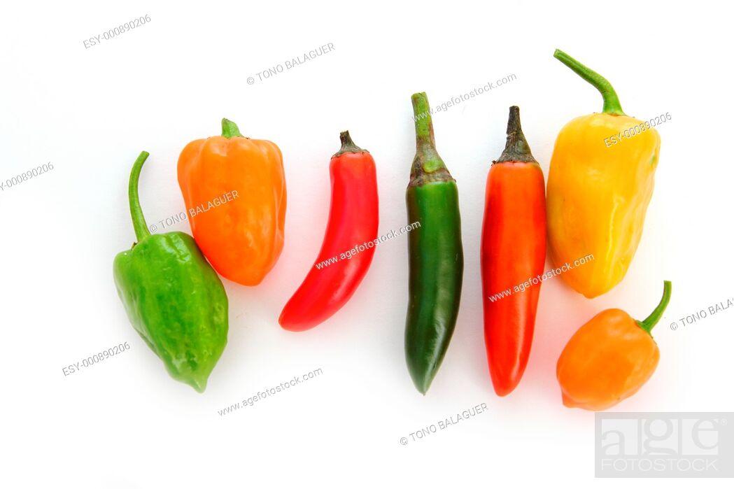 Stock Photo: mixed chili Habanero Serrano hot mexican peppers.