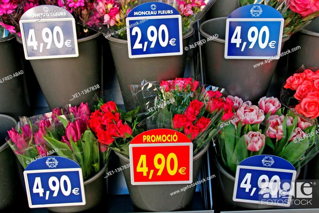 Stock Photo: florist, Tarragona.