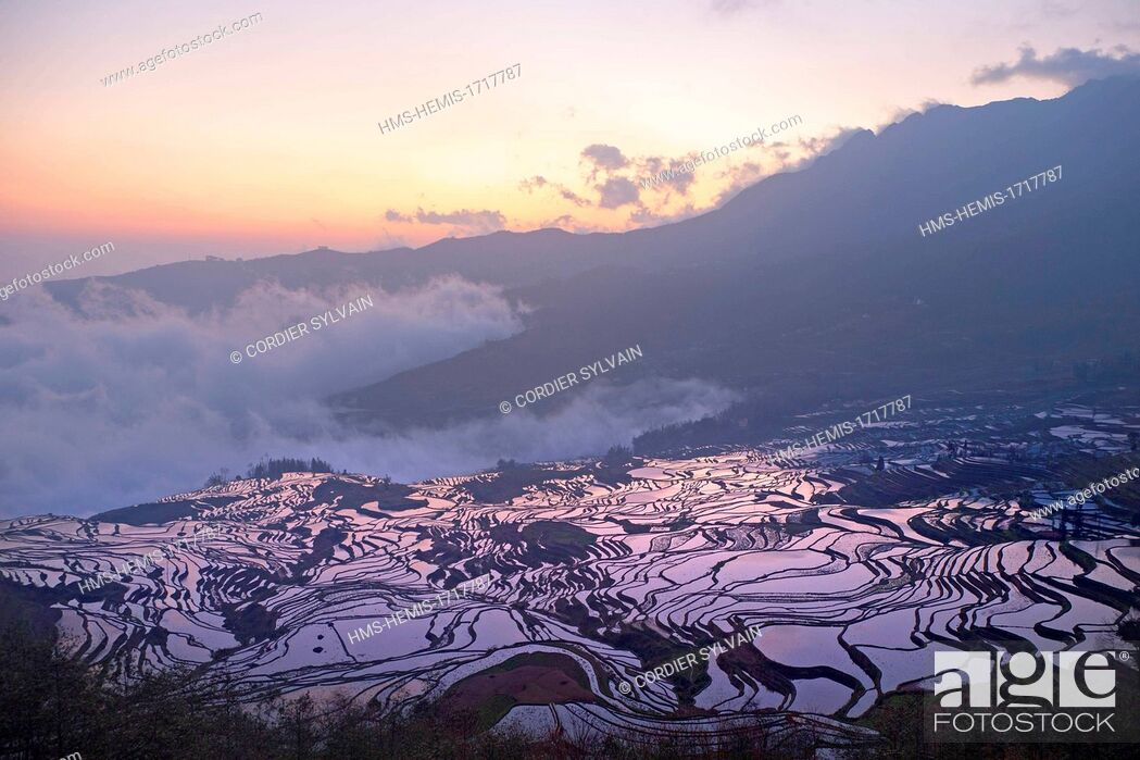 Stock Photo: China, Yunnan province, Yuanyang, Cultural Landscape of Honghe Hani Rice Terraces, listed as World Heritage by UNESCO, Duoyishu village, rice terraces, sunrise.