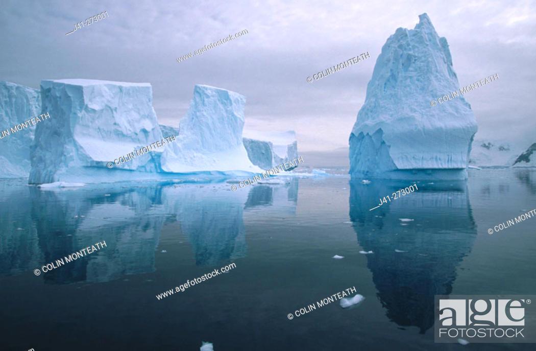 Imagen: Iceberg in reflection. Andvoord Bay. Antarctic Peninsula.  Antartica.