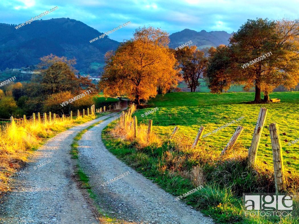 Imagen: Trail, meadows and rural landscape near Ceceda village, Nava municipality, Asturias, Spain.