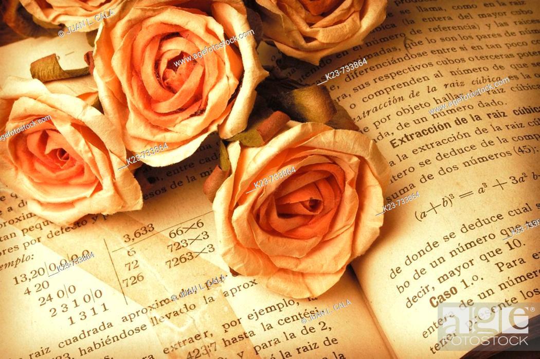 Stock Photo: Libro y flores de papel.