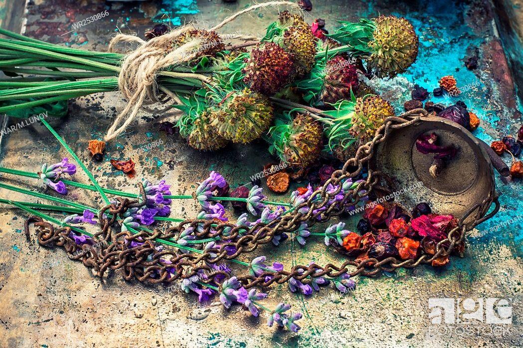 Stock Photo: herbal medicine.