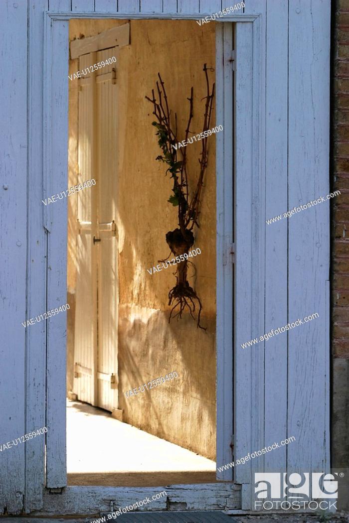 Stock Photo: building, wooden, wood, wooden panel, wooden door, wooden doorway.