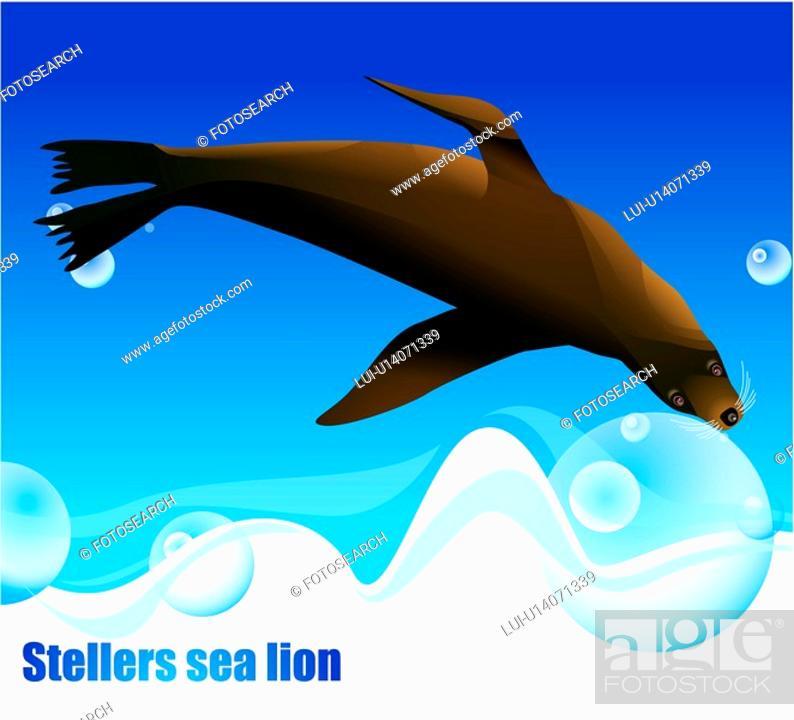 Stock Photo: Stellers sea lion, sea, seafloor, nature, ocean, animal, background.