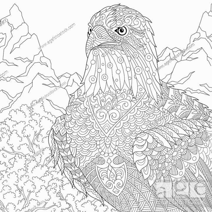 Coloring page of American bald eagle - national symbol of ...