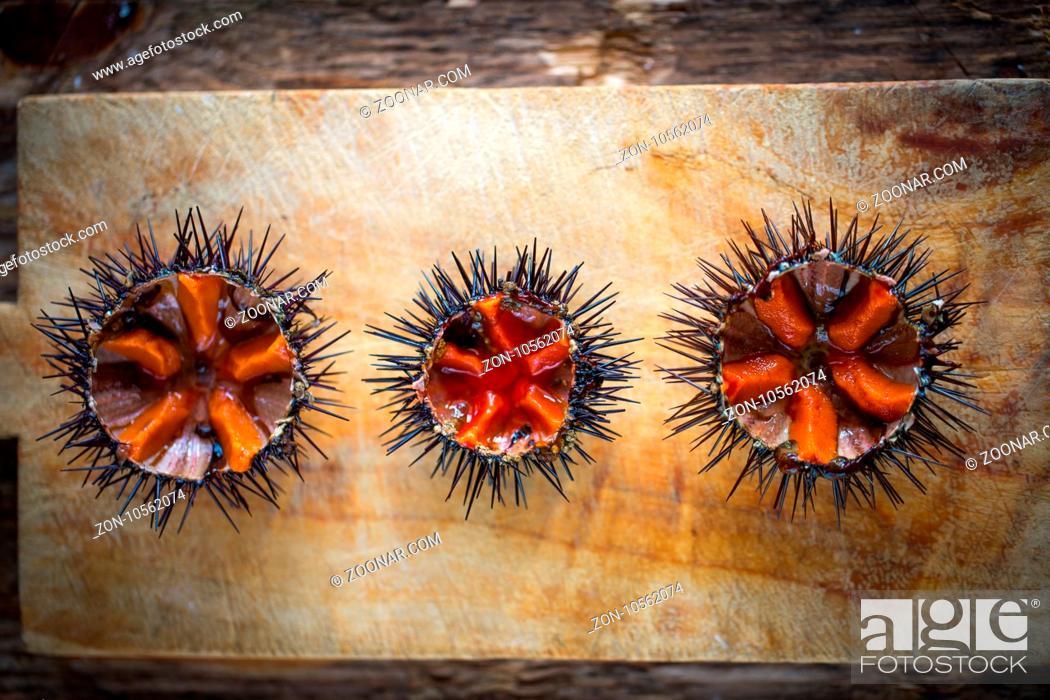 Imagen: Fresh sea urchins from south of Italy, Puglia region.