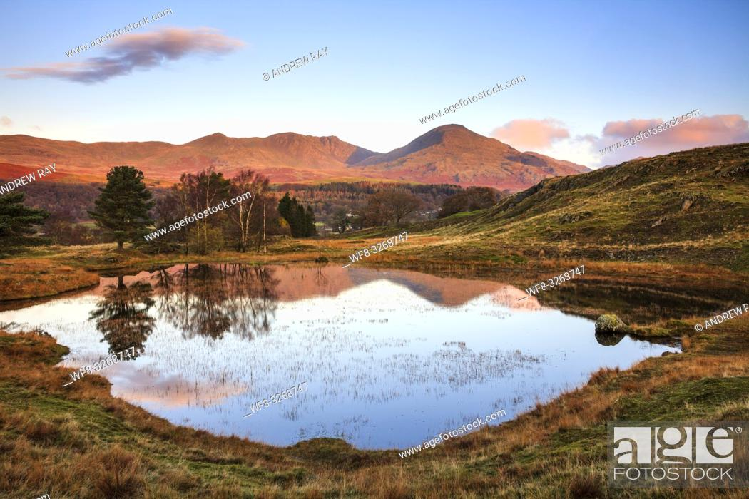 Stock Photo: Kelly Hall Tarn near Torver in the Lake District National Park with the Old Man of Coniston in the distance.