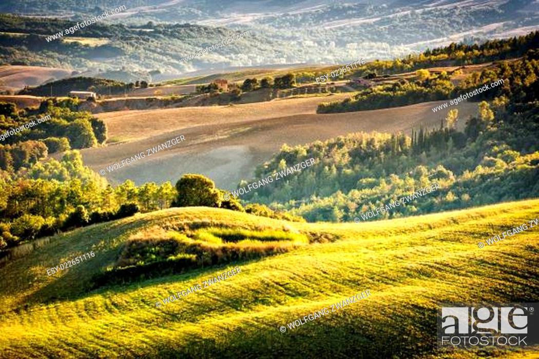 Stock Photo: Tuscany landscape at sunset.