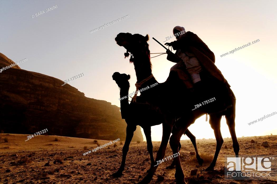 Stock Photo: A beduin man with his camels, Wadi Rum desert, Jordan, Middle East.