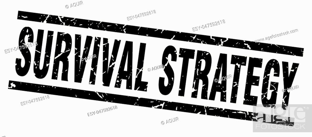 Stock Vector: square grunge black survival strategy stamp.