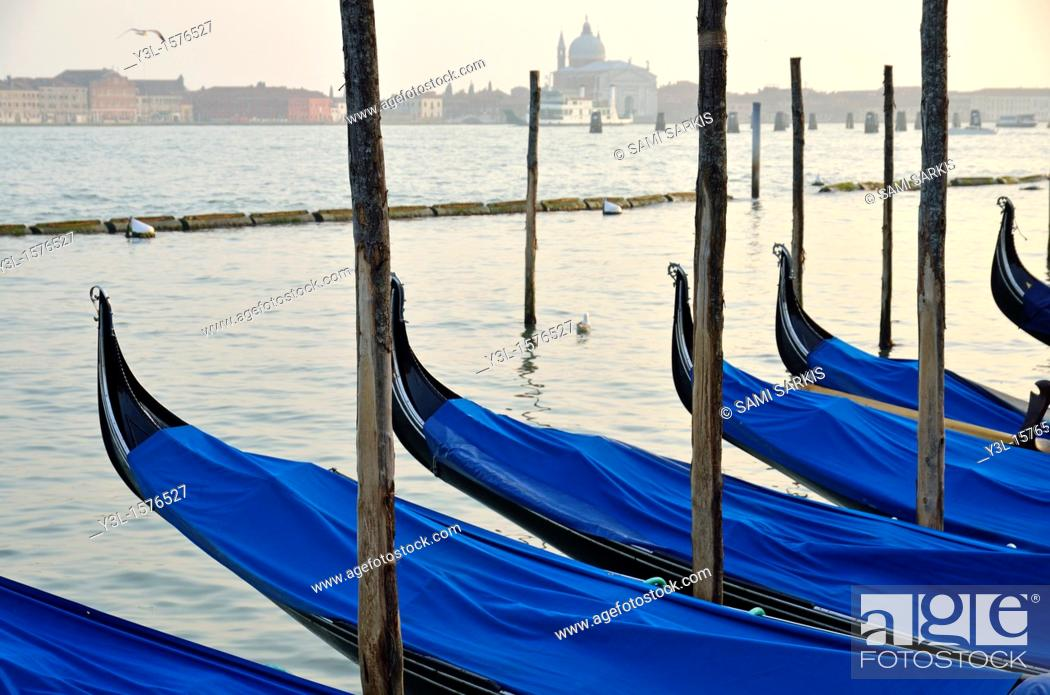Stock Photo: Venetian lagoon and moored gondolas, Venice.