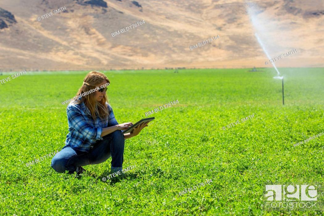 Stock Photo: Caucasian farmer using digital tablet in field.