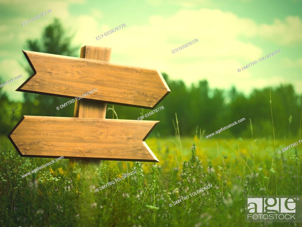 Stock Photo: Beauty summer meadow. Rural landscape with empty road sign for your design.