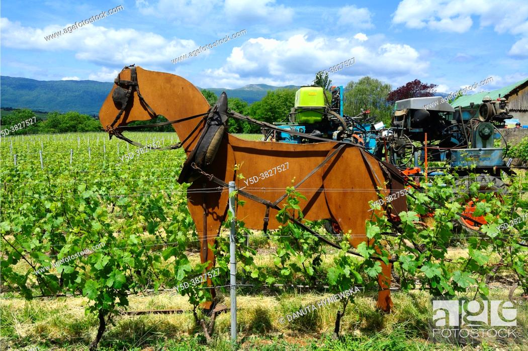 Imagen: Winery historic machines (with model of the most historic machine - horse in foreground) shown during 'Caves ouvertes' annual event when vineyards and cellars.
