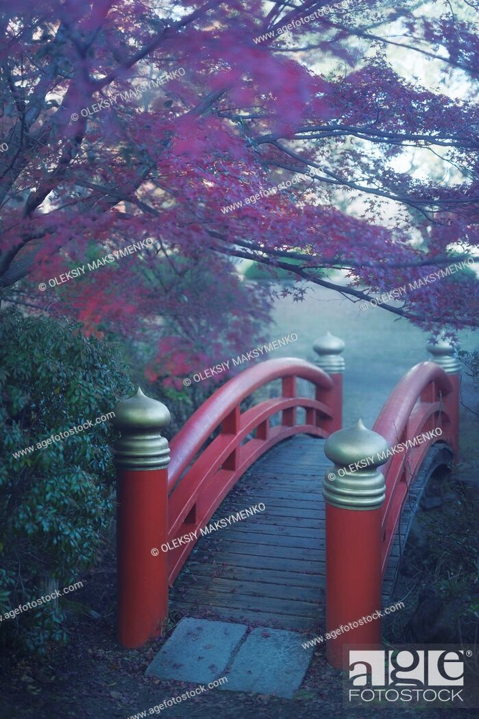 Stock Photo: Arched red bridge in a Japanese garden, misty autumn scenery in Kyoto, Japan.