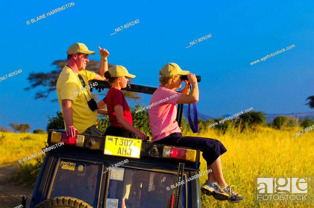 Stock Photo: A family watching lions from the top of a safari vehicle, Tarangire National Park, Tanzania.