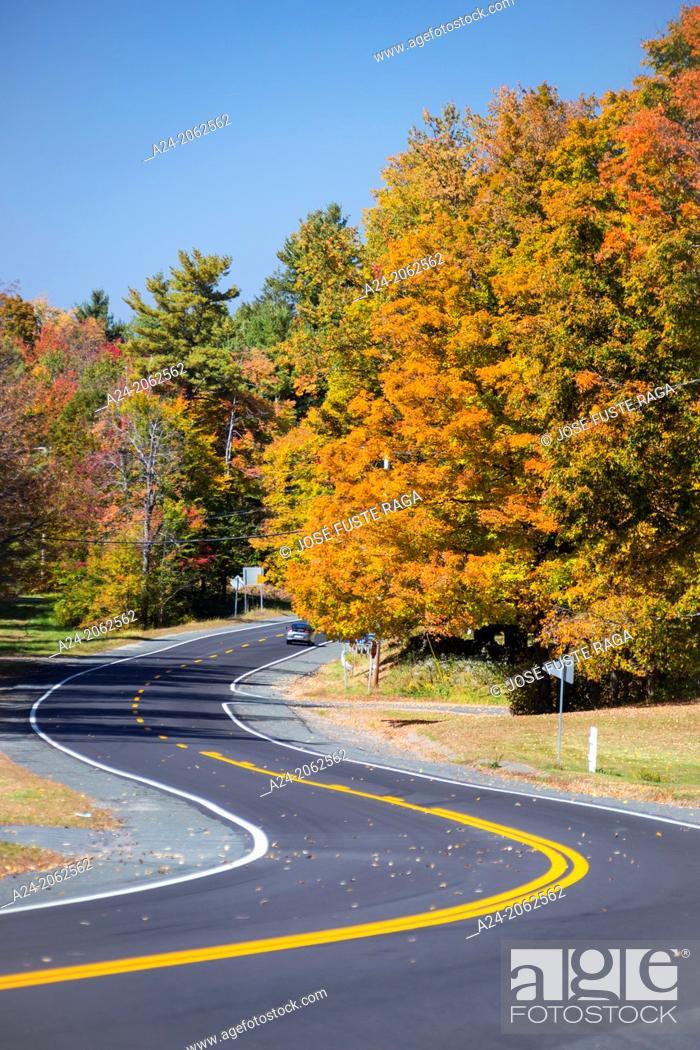 Stock Photo: USA , Massachusetts, Berkshire District, Road.