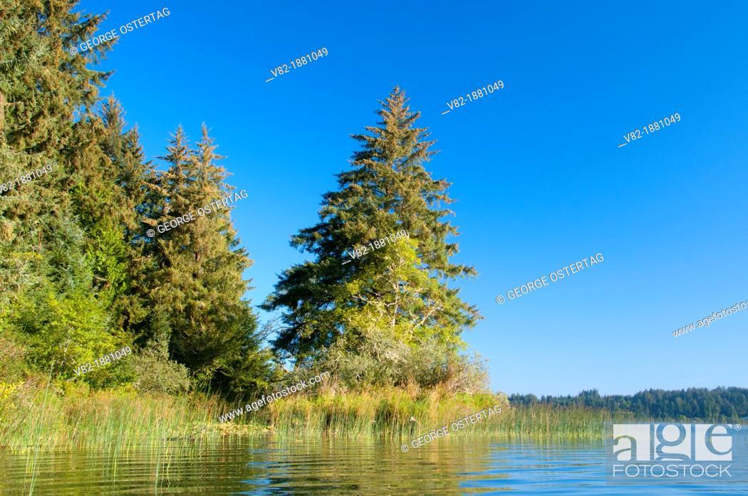 Stock Photo: Siltcoos Lake, Oregon Dunes National Recreation Area, Oregon.