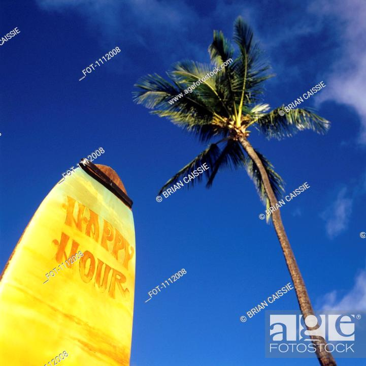 Stock Photo: A surfboard with Happy Hour on it and a palm tree.