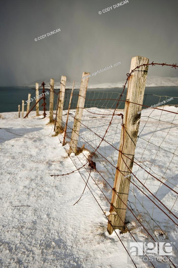 Stock Photo: Rusty barb wire fence through snowy landscape, Isle of Harris, Outer Hebrides, Scotland.