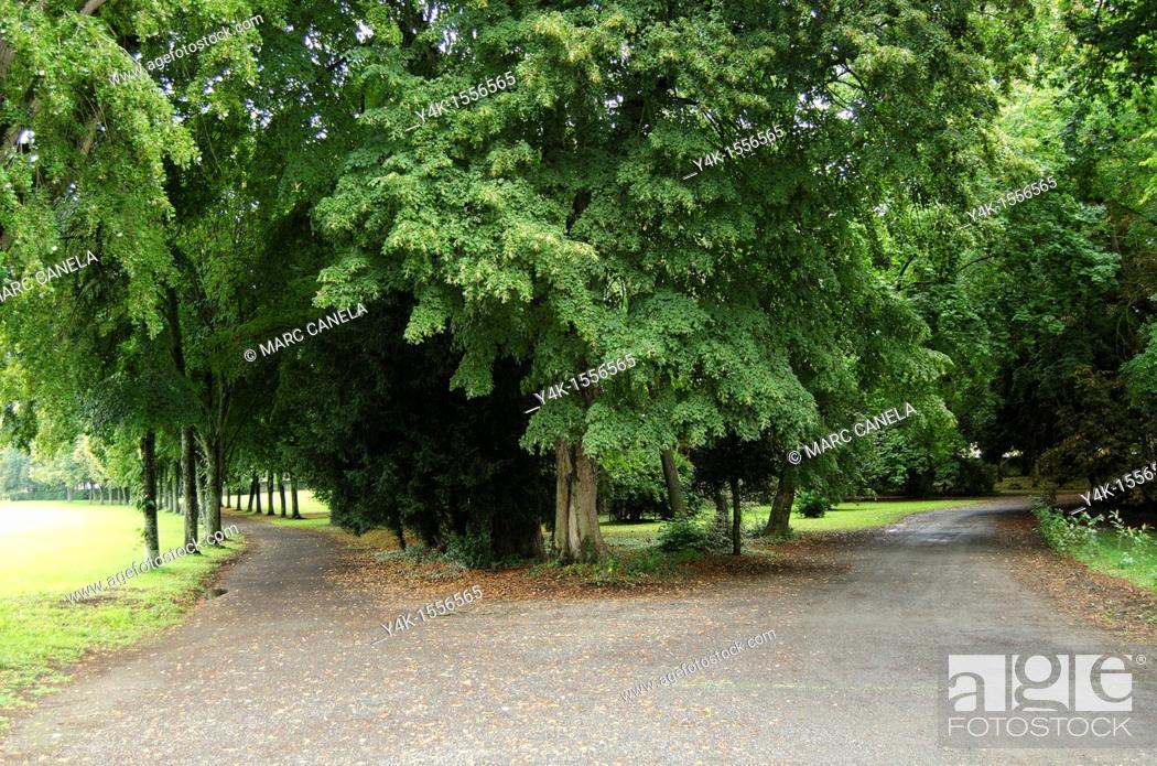 Stock Photo: Go right or left, Combourg castle garden, Ille-et-Vilaine, Brittany, France.